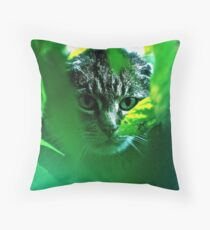 My   F   A   V   O   R   I   T   S  !   Warrior Cats Theme Songs  . by Brown Sugar . Tribute to Wild World - Cat Stevens . VIEWS 3364. Featured . MYSTERIES OF THE PAST AND PRESENT . Has been sold. Throw Pillow