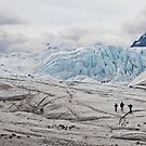ice walkers by helveticaneue
