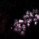Fireworks 1 by photonista