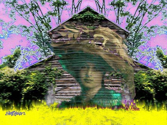 Bitter Acres Tender Memories by Seth  Weaver