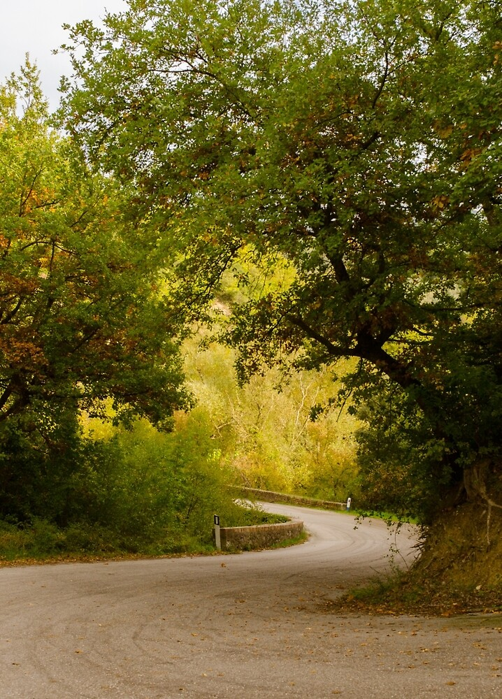 A winding road by Andrea Mazzocchetti