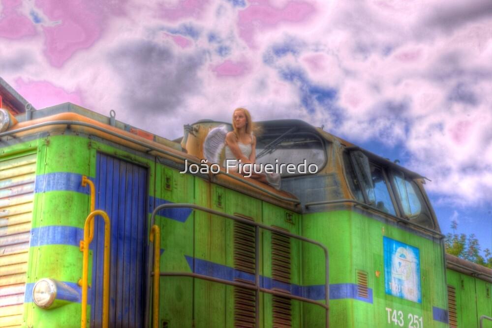 The safest journey – Den säkraste resan by João Figueiredo
