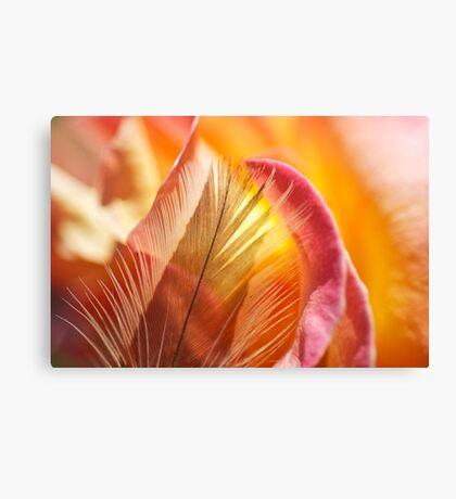 Rose Burst Canvas Print