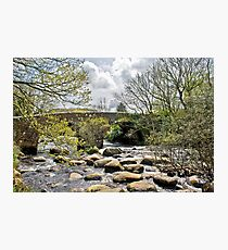 Badgers Holt Photographic Print