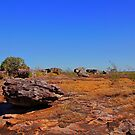 A very ancient rock strewn landscape  by georgieboy98