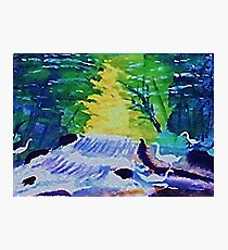 Waterfall and Fowl, watercolor Photographic Print