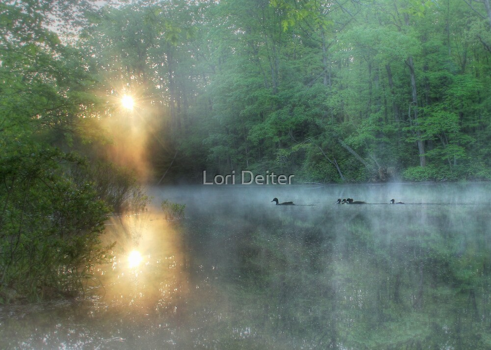 Morning has Broken by Lori Deiter