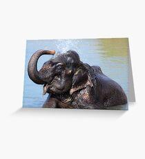 Bath Time Greeting Card