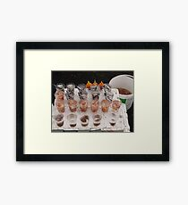 Lots of little things to catch larger things with Framed Print