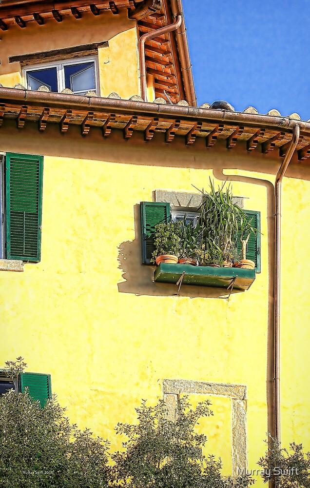 Tuscany potplants by Murray Swift