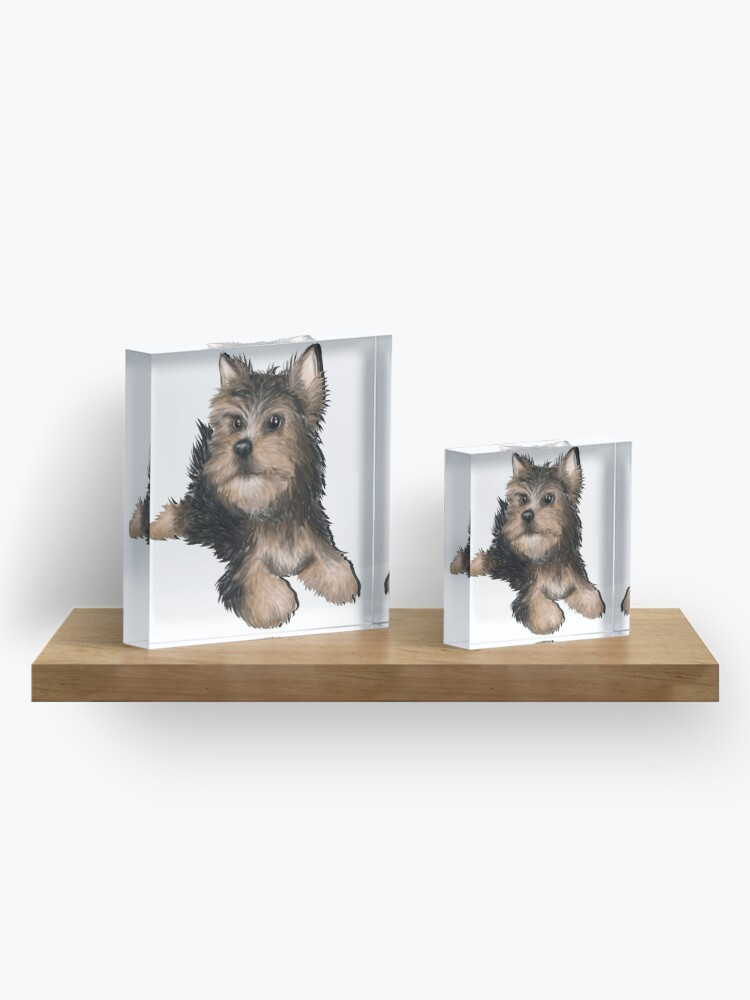 Alternate view of Alert Young Yorkshire Terrier Puppy Acrylic Block