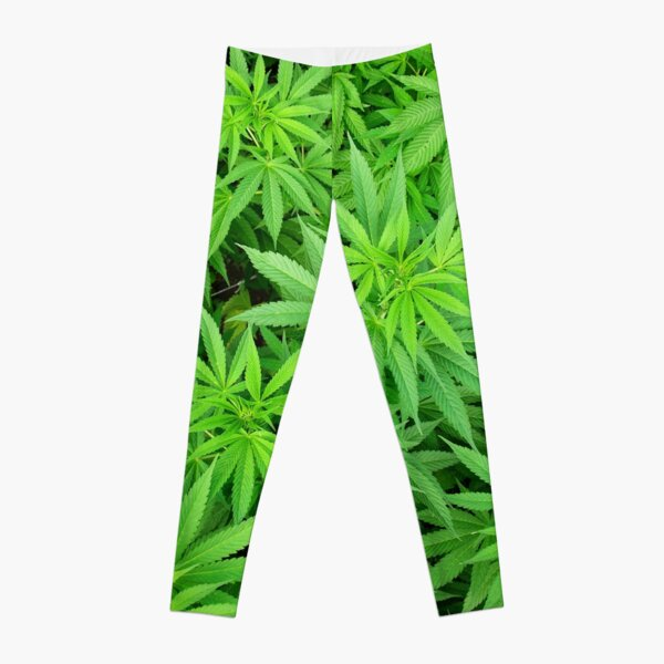 Marijuana Cannabis Weed Pot Plants Leggings