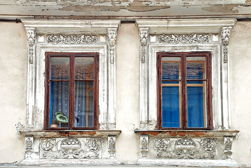 Windows update needed by Arie Koene