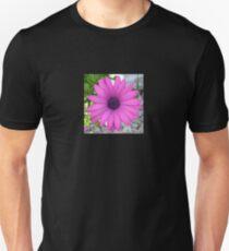 Violet Pink Osteospermum Flower Daisy Unisex T-Shirt