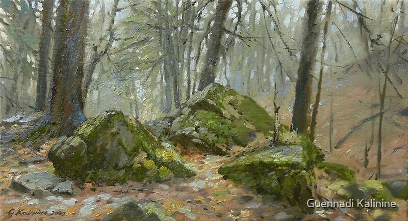 Rocks by Guennadi Kalinine