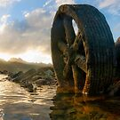 Weel of Rust by David  Preston