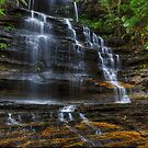 Junction Falls.  by Julie  White