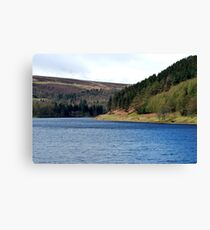 Valley Canvas Print
