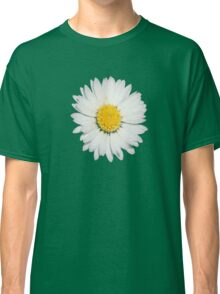 Closeup of a Beautiful Yellow and White Daisy flower Isolated Classic T-Shirt