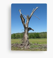 Gandalf Tree Canvas Print