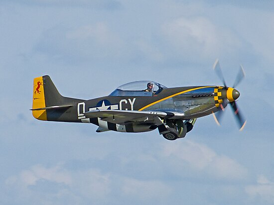Mustang Scramble by Colin  Williams Photography