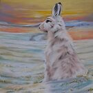 Mountain Hare by Redbarron