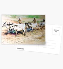 Ploughing Field Postcards