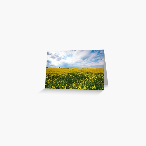 Wishing For Summertime  Greeting Card