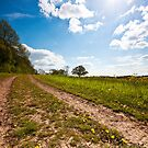 Blue Skies Return by Billy Hodgkins