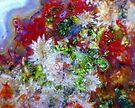 Crystal Spray by Stephanie Bateman-Graham
