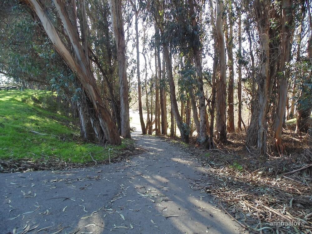 Path by annnaalove