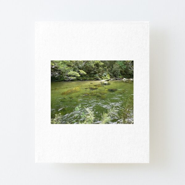 Milford Track 7 Canvas Mounted Print