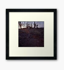 Snowdrops and stone Framed Print