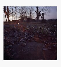 Snowdrops and stone Photographic Print