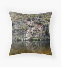 River Dart No.4 Throw Pillow