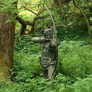 Robin Hood by Robert Steadman