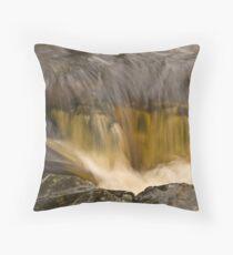 River Dart No.1 Throw Pillow