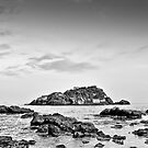 Seascape with rocks  by Andrea Rapisarda