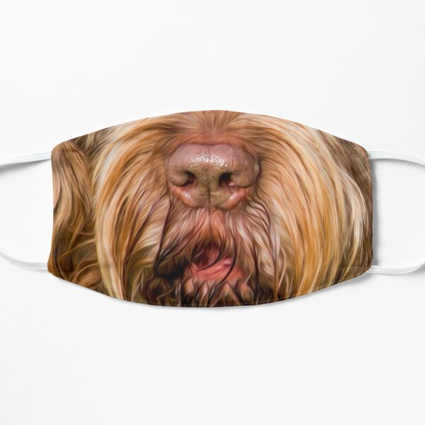 Soft and fluffy Spinone Mask