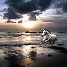 Horses on Greve D'Azette beach Jersey by Nicky Stewart