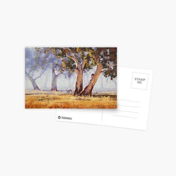 Kangaroo Grazing Postcard