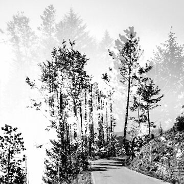 Woodland von schwebewesen