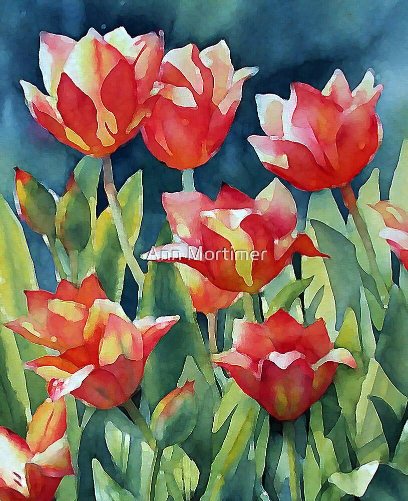 Sunlit Tulips enhanced by Ann Mortimer