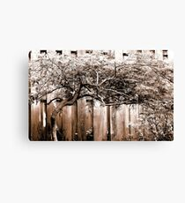Monochrome Tree Canvas Print