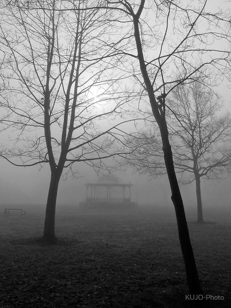 Foggy Morning in the Park by KUJO-Photo