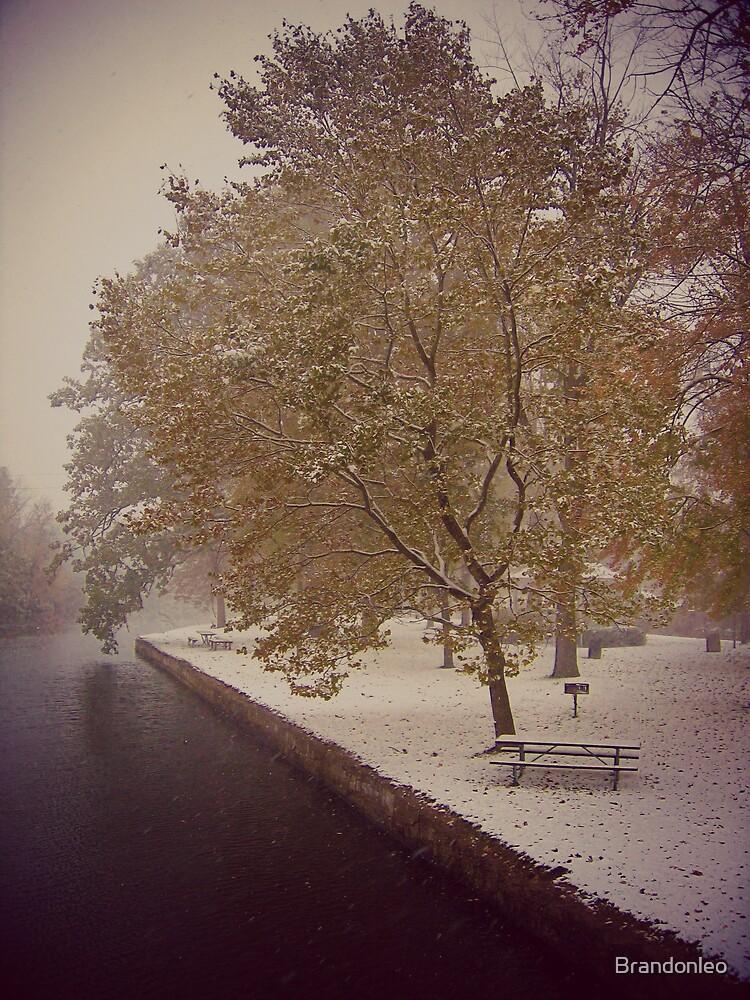 Early Fall Snow  by Brandonleo
