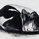 quiet dream by kipari