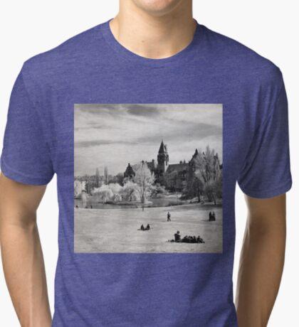 Tolpa's Park Tri-blend T-Shirt