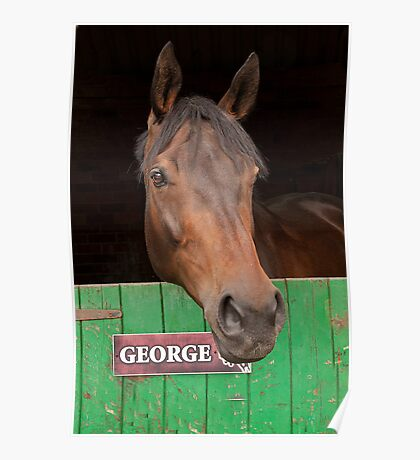 Gorgeous George  !! Poster