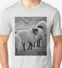 Are you following me T-Shirt